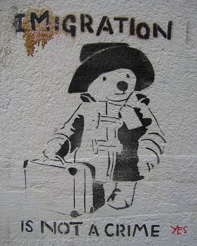 Immigration paddington bear